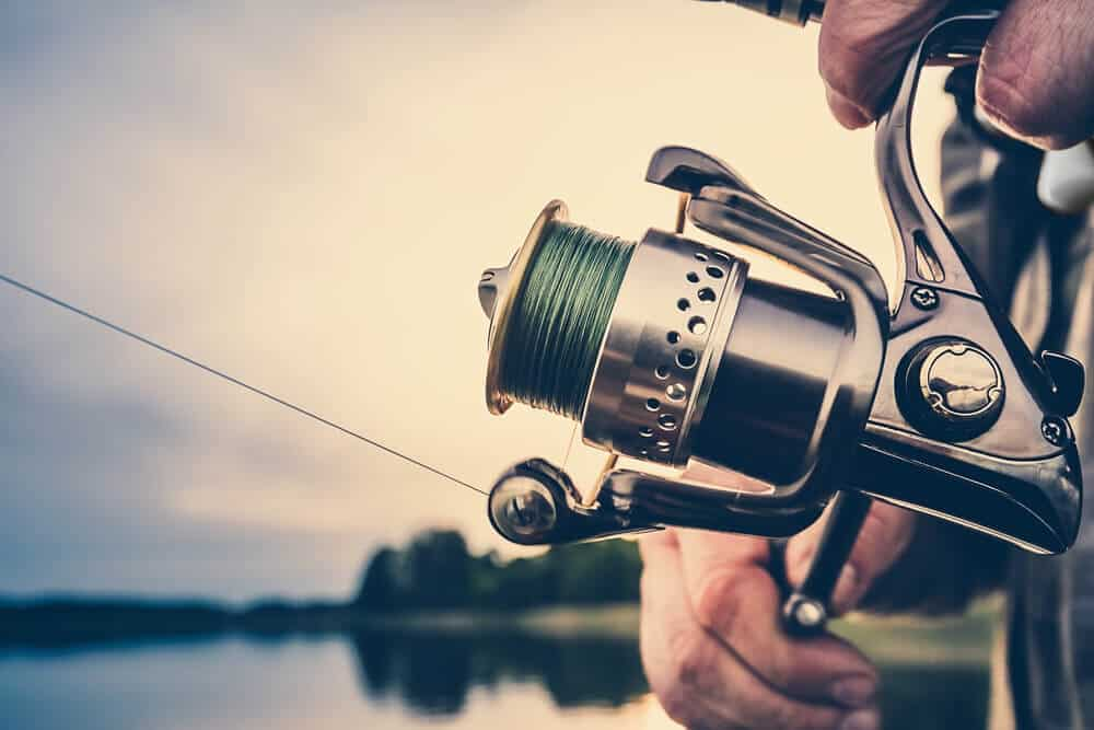The Body and Weight of the Reel