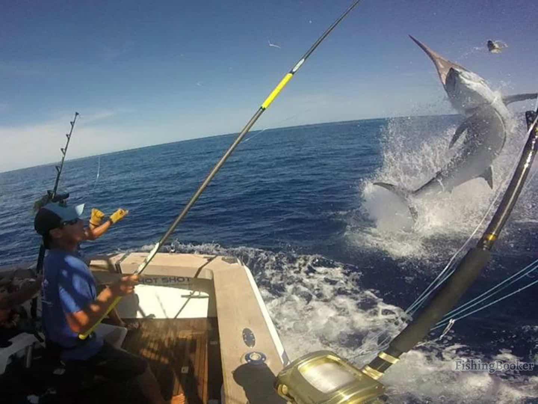 8 Best Fishing Spots in the World - Cairns Australia