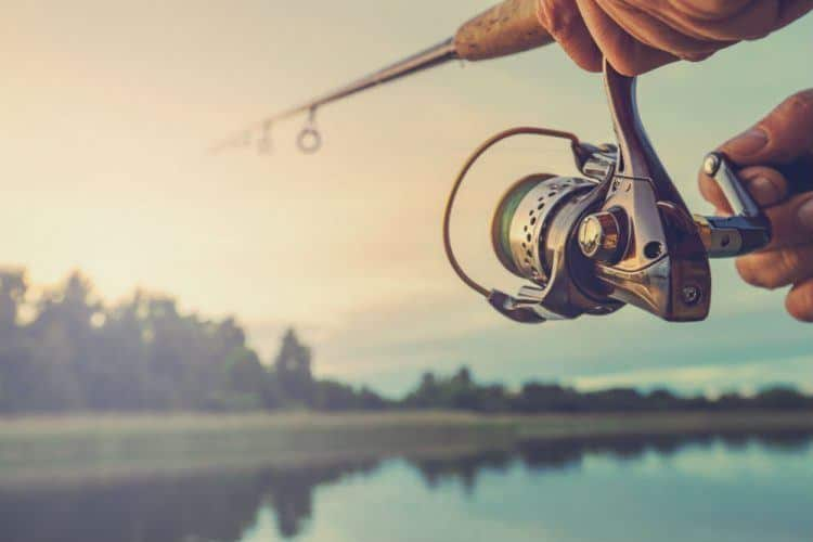 Best Spinning Reel Under 50 Dollars – Buyer's Guide