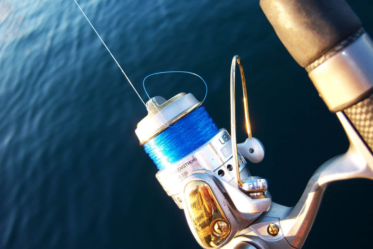 Best Monofilament Lines