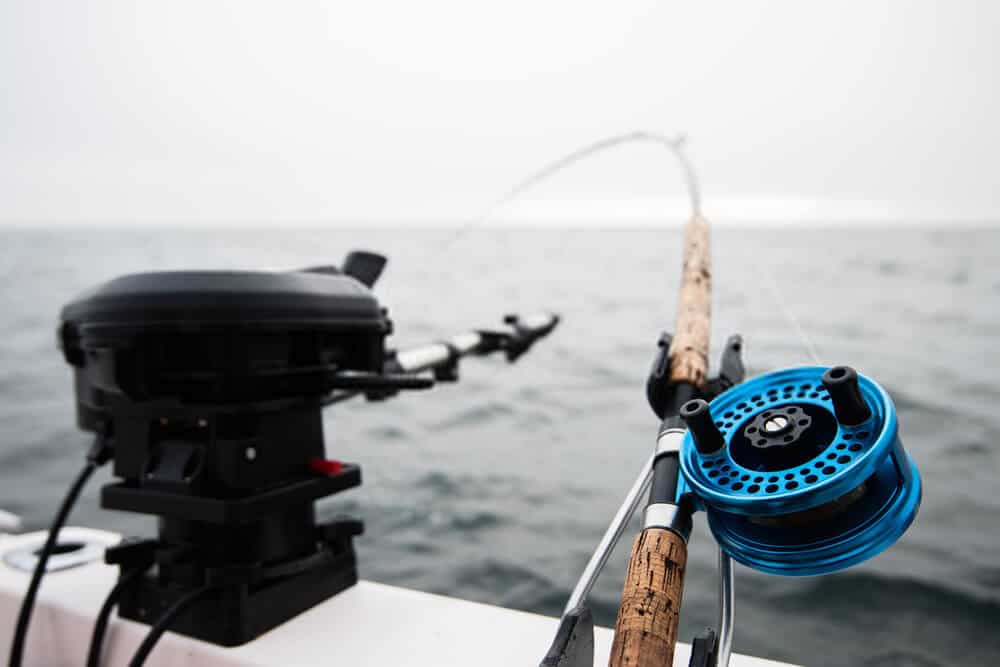 Castability of the Fishing Rod