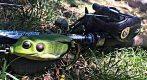Best Frog Rods